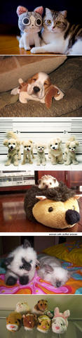 stuffedanimals23.jpg
